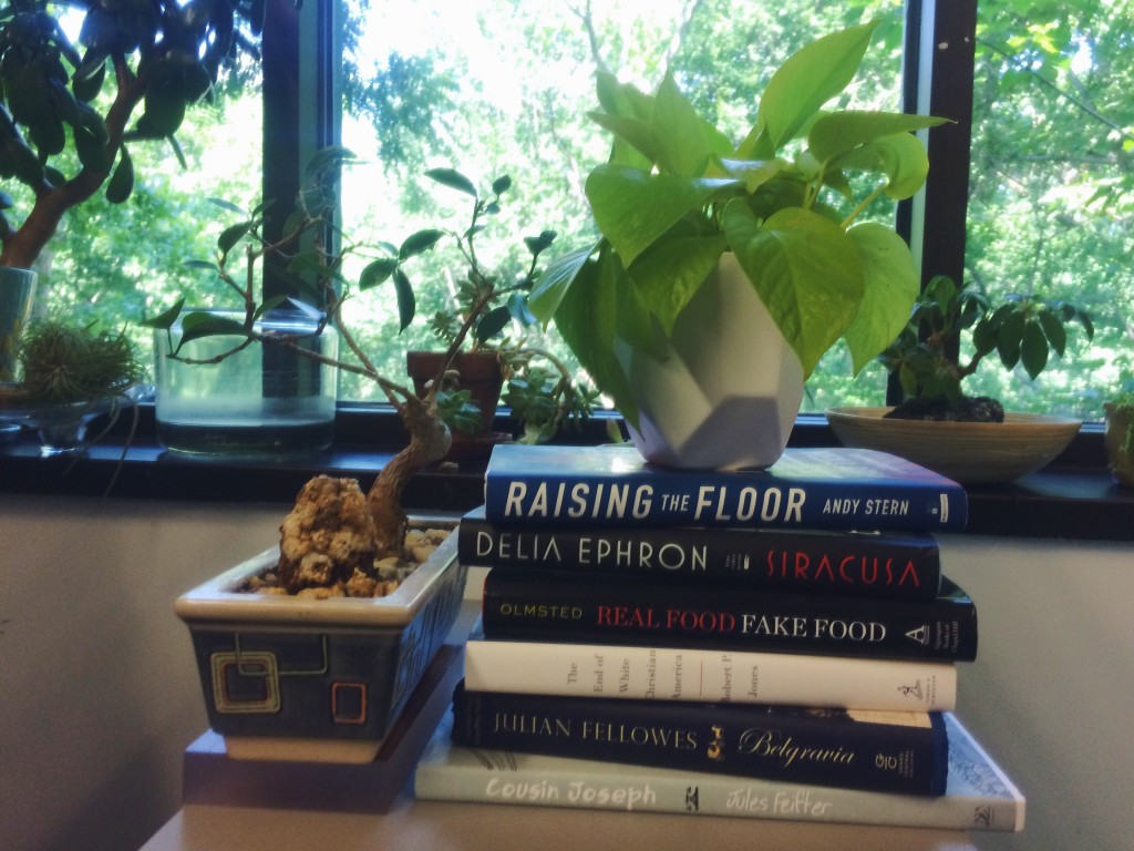 A selection of the books we'll be talking about in July.